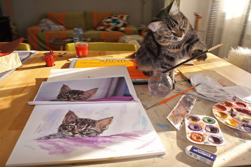 Aquarelle portrait chat