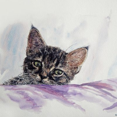 Aquarelle portrait chat 24-30cm