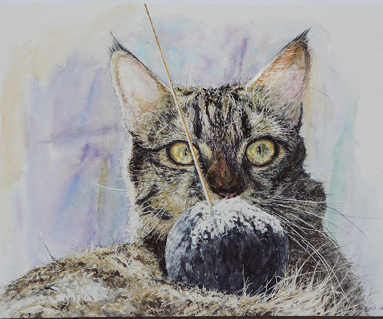 Portrait chat aquarelle Touna